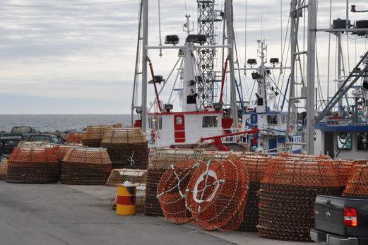 Le crabe des neiges perd sa certification de pêche durable