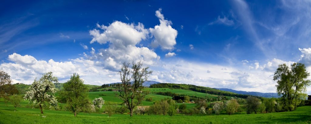 Un printemps doux et ensoleillé dans Rocher-Percé ?